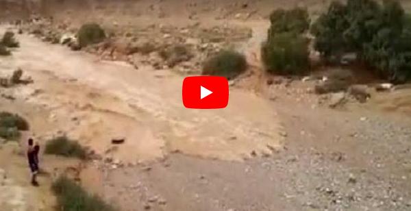 VIDEO Momento en que un río renace en el desierto de Israel