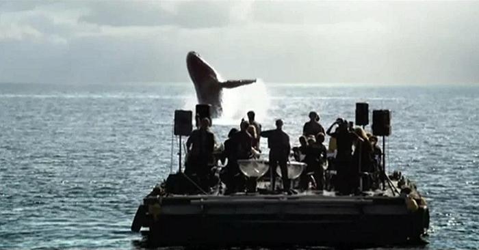 orquesta toca una canción para las ballenas