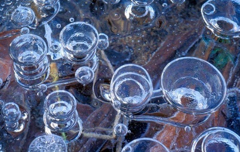 Burbujas de gas metano congeladas bajo la superficie del agua
