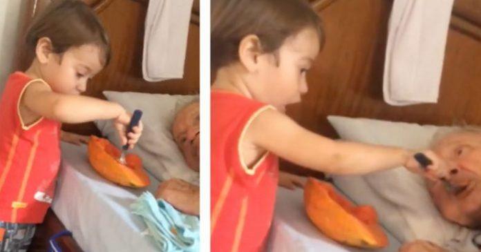 Niño da de comer a su abuelito y el momento emociona a miles en Internet