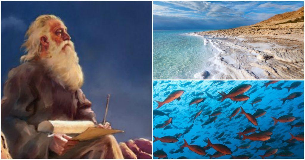 Se está cumpliendo la profecía del Profeta Ezequiel sobre el Mar Muerto