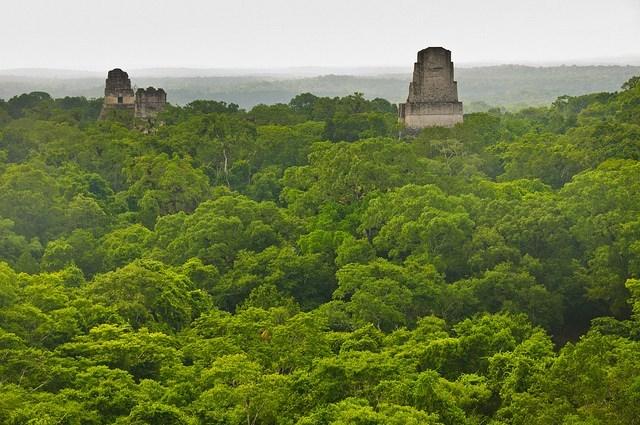 descubrimiento de una ciudad maya