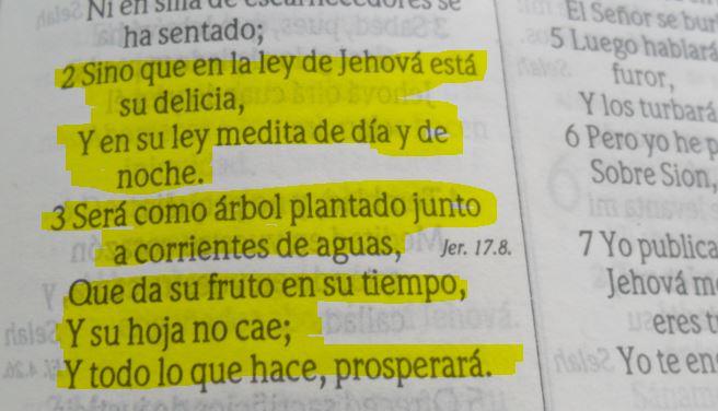 Salmos 1: 2 - 3