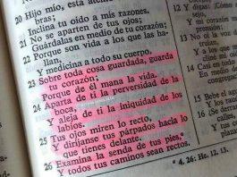 Proverbios 4 23-26