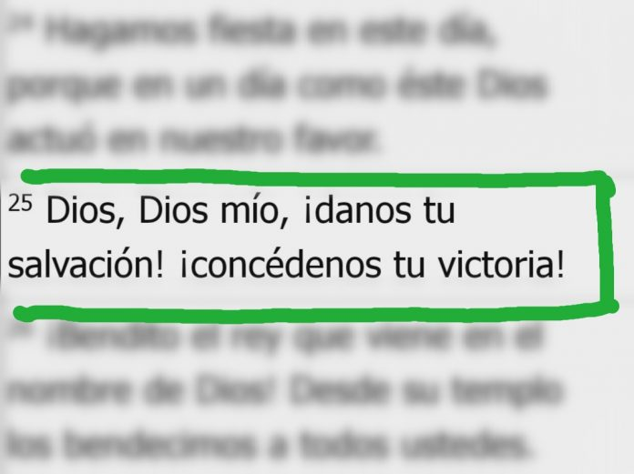 Salmos 118-25 Dios mio