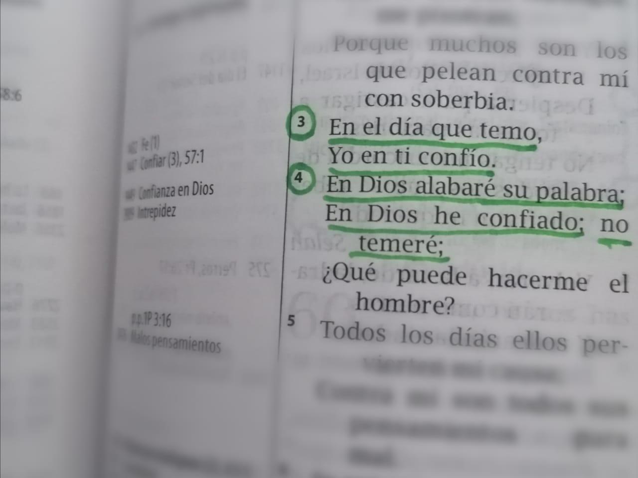 En Dios alabaré su palabra; En Dios he confiado; no temeré